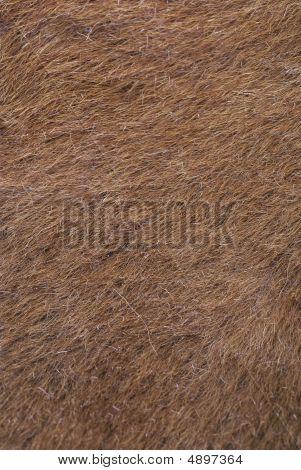 Grunge Fur Background