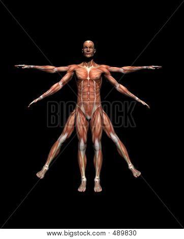 Medical Pose