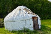 picture of nomads  - Nomadic Yurt in a forest clearing at sunset - JPG