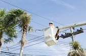 image of cherry-picker  - Electrician worker in cherry picker solve palm leaf and protect a wire of the power line - JPG