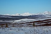 image of denali national park  - Mountains rise above snow - JPG