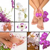 stock photo of pedicure  - Spa collage with orchids pedicure and aromatherapy - JPG