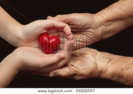 Little Girl And Elderly Woman Keeping Red Heart In Their Palms Together
