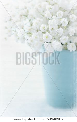 White Baby's Breath Flowers
