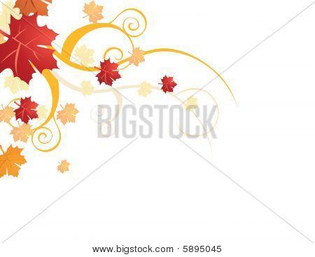 Autumn leaves vector illustration on white