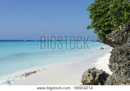 Paradise beach at Zanzibar in Tanzania, Africa