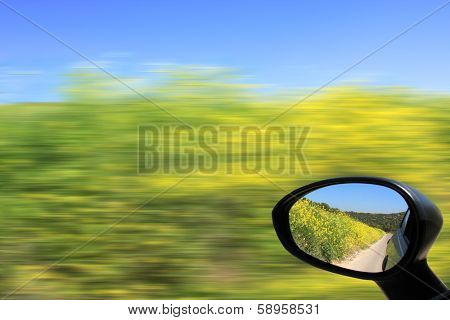 Blurred yellow and green flowers under blue sky as seen from fast moving car.