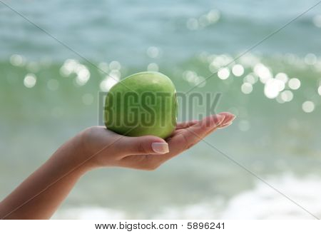 Woman`s Hand Holding A Green Apple