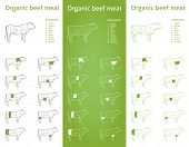 foto of flank steak  - Icon set for packaging and info  - JPG