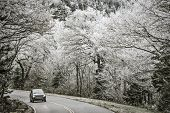 stock photo of gatlinburg  - Smoky Mountains roadway in Tennessee - JPG