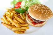 pic of hamburger-steak  - Cheese burger  - JPG