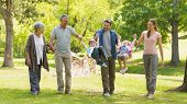 picture of extended family  - Full length of an extended family playing in the park - JPG