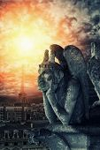 picture of gargoyles  - Chimera  - JPG