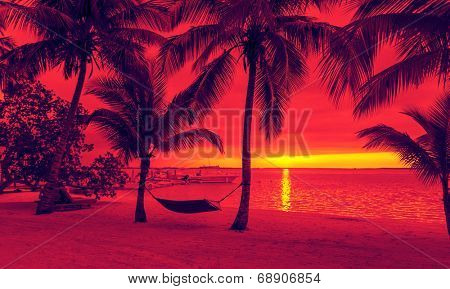 vacation, beach, summer and leisure concept - silhouettes of coconut trees with hammock on the beach, red sunset view