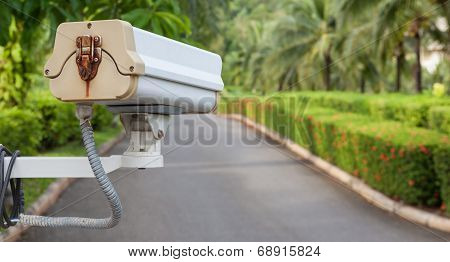 Security Camera, Cctv In Garden