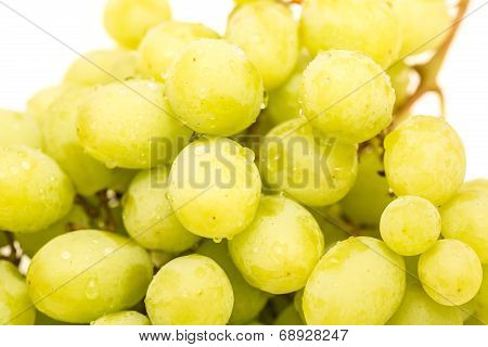 Closeup Of Wet Green Seedless Grapes