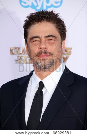 LOS ANGELES - JUL 21:  Benicio Del Toro at the