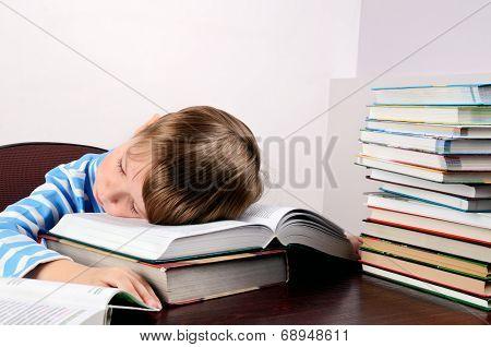 Little Boy Sleeping On Books
