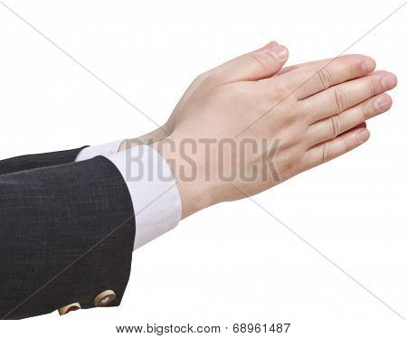 Two Pointing Hands - Hand Gesture