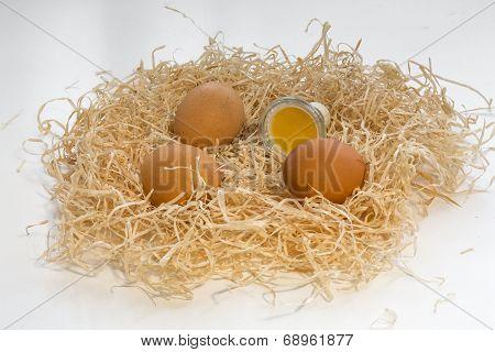 Gu10 Led Bulb Looking Like Yolk Of An Egg With Eggs