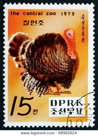 Postage Stamp North Korea 1979 Turkey, Bird