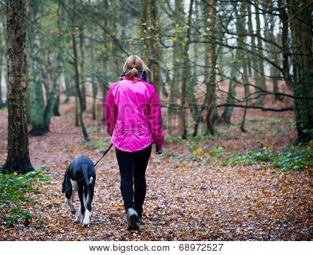 Female walking with Great Dane Puppy