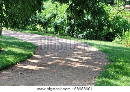 Curvy  Sidewalk