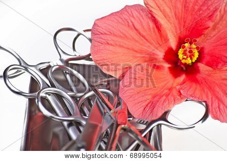 Forceps With Rose
