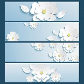 stock photo of sakura  - Set of trendy stylish banners with white blossoming 3d flower sakura and leaf isolated - JPG