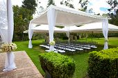 image of canopy roof  - a wedding marquee with bouquets of roses - JPG