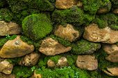 image of old stone fence  - Beautiful Old Stone Wall With Moss - JPG