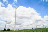 stock photo of cassava  - Wind turbine in cassava farm for generating electricity - JPG