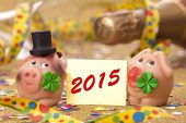 picture of talisman  - pig with cloverleaf as talisman for new year 2015 - JPG