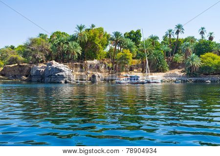 The Island In Nile