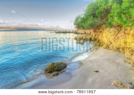 Rocks And Plants In Lazzareto Beach