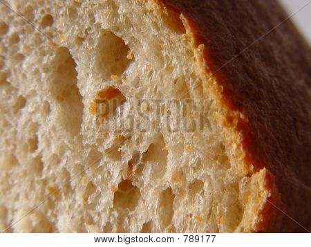 Fresh Slice of Bread with Crust