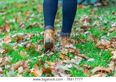Boots in autumn birch leaves