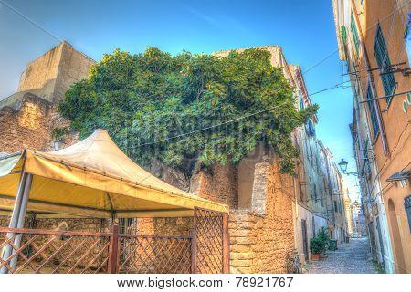 Backstreet In Alghero Old Town
