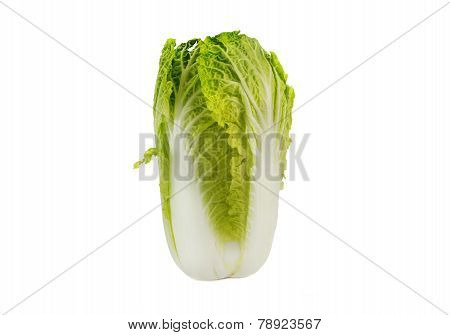 Close Up Of Napa Cabbage Isolated Over White