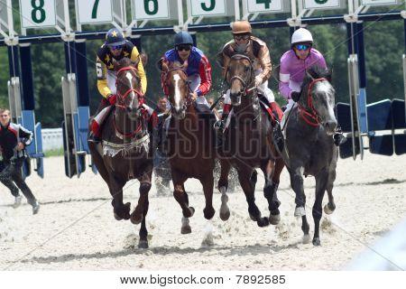 Four Horses Racing.