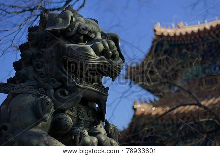 beijing china lama temple Buddhist stone dog