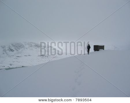 alone in the snow