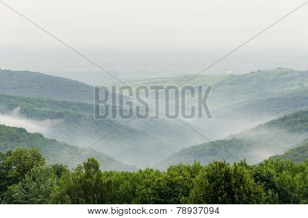 Fruska Gora Mountain