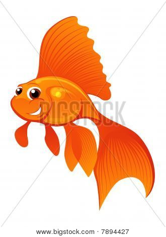 Happy Goldfish