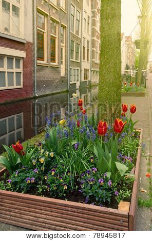 street of Delft, Holland