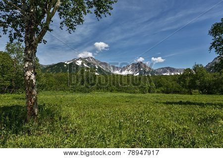 Beautiful Summer Landscape With Mountain View