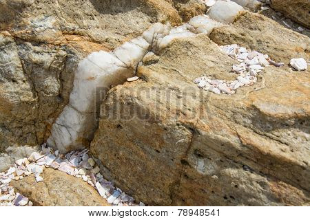Calcite Vein In Rock