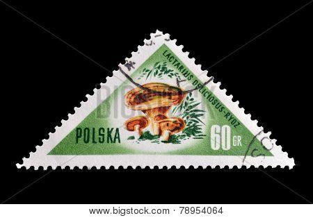 Poland 1959