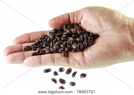 Fresh Roasted Coffee Beans Pouring