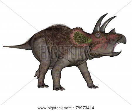 Triceratops dinosaur walking - 3D render